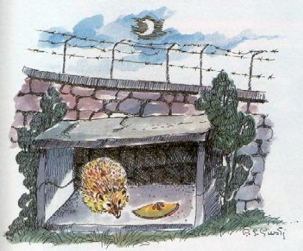 Giardinaggio home page - Riccio in giardino ...